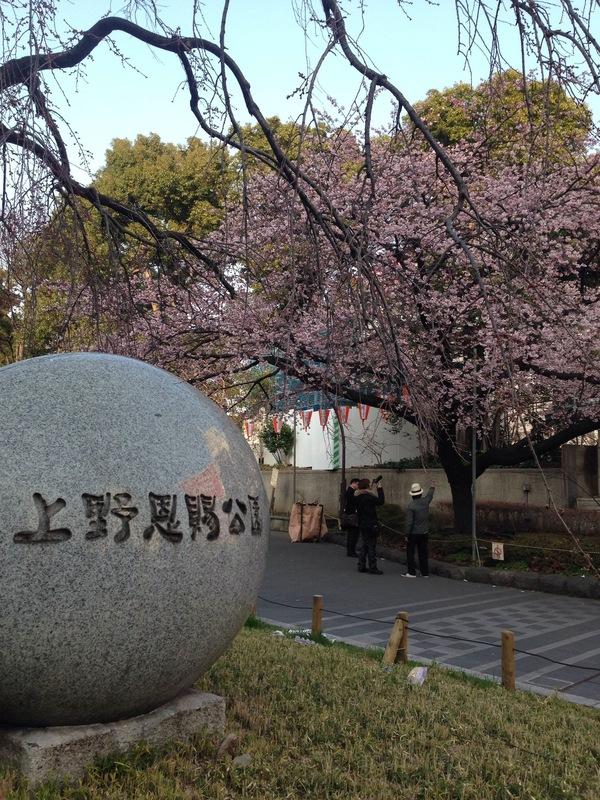 上野写真.jpg