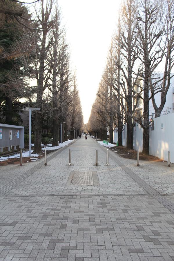 駒場写真.JPG