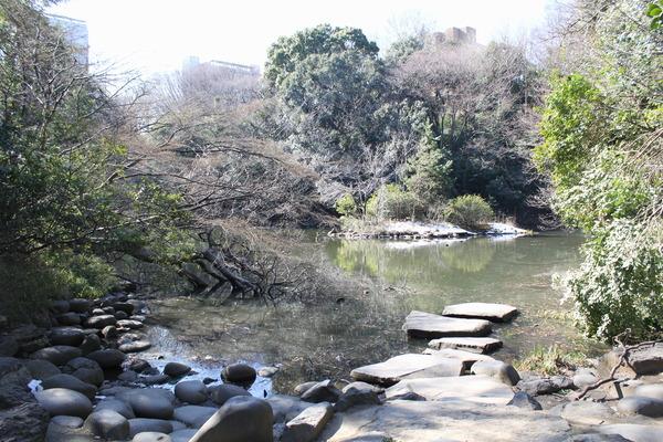 0120三四郎池.JPG