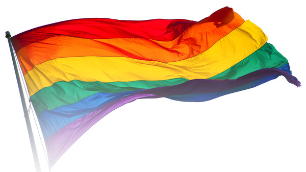 Rainbow_flag_breeze21.jpg