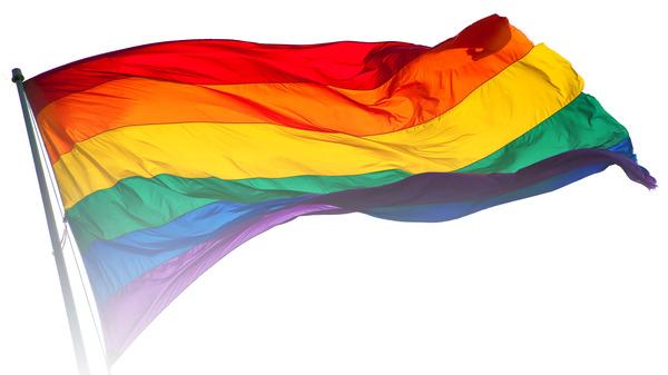 Rainbow_flag_breeze21.jpg