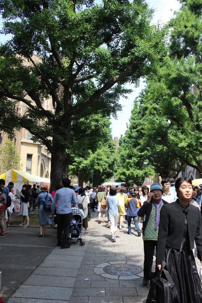 14,15日に行われた第89回五月祭に14万5千人が訪れた(撮影・石沢成美)