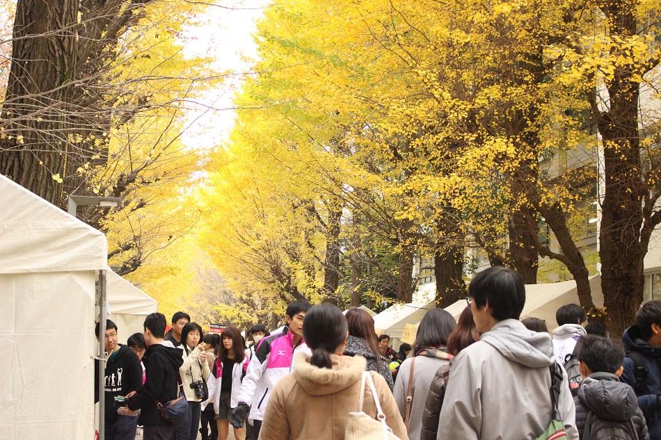 イチョウ並木に屋台が並び、多くの人でにぎわった=11月27日、駒場Ⅰキャンパスで(撮影・石沢成美)